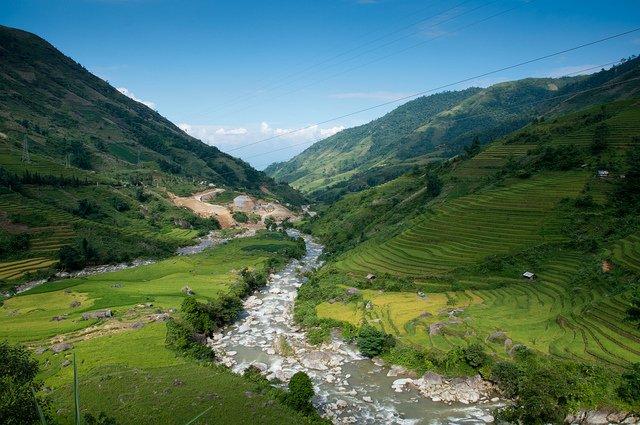 Risaie in Vietnam