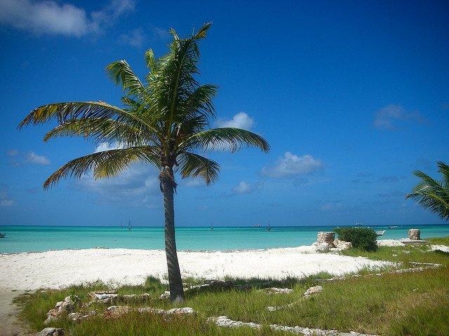 Palm Beach una delle spiagge più rinomate di Aruba!