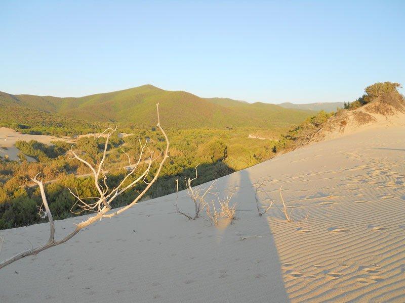images dune piscinas 1