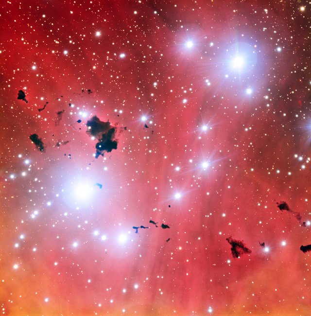 nursery-stelle