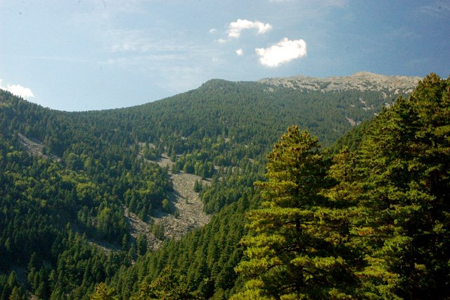 Pelister-Mountain-parco-in-macedonia