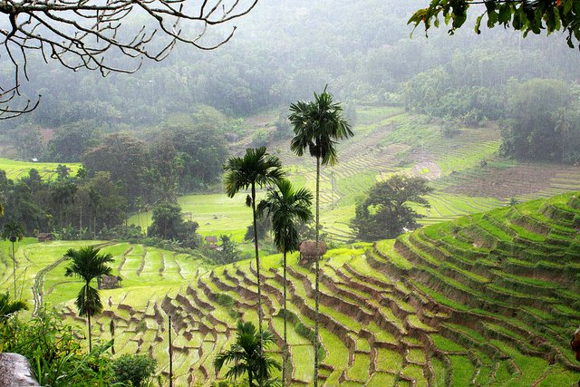 Sri Lanka al primo posto tra le mete del turismo mondiale più consigliate nel 2013