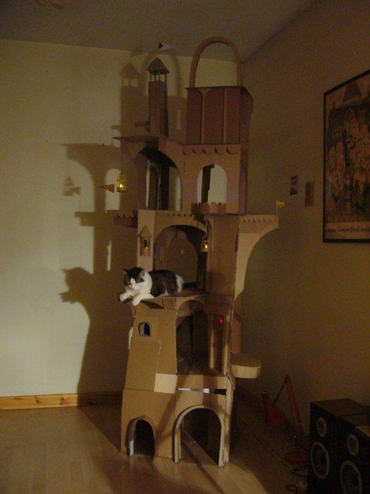 torre-cartone-per-gatti